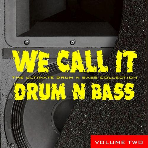 Album Art - We Call It Drum N Bass, Vol.2
