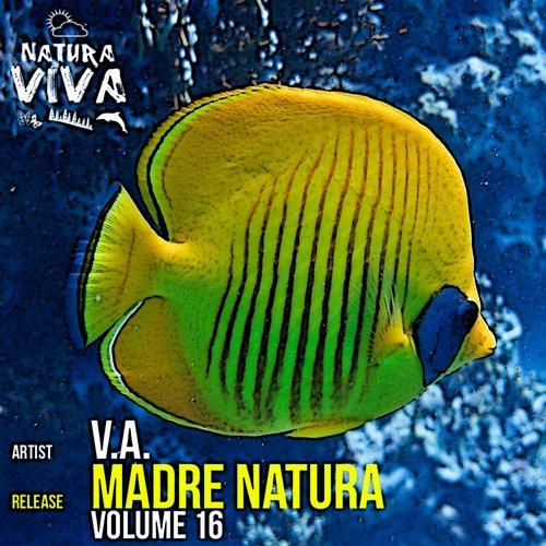 Album Art - Madre Natura Volume 16