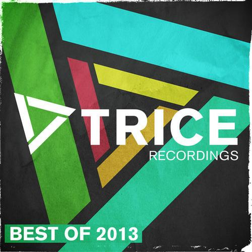 Album Art - Trice Recordings - Best Of 2013
