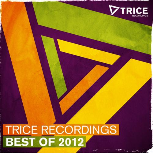 Album Art - Trice Recordings - Best Of 2012