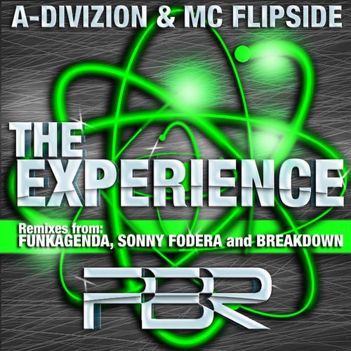 Album Art - The Experience (Remixes)