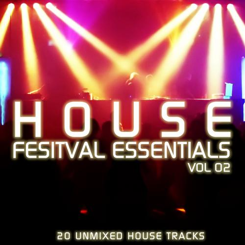 Album Art - House Festival Essentials
