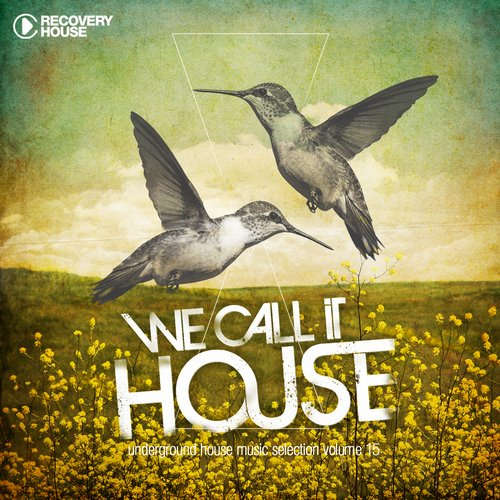 Album Art - We Call It House Vol. 15