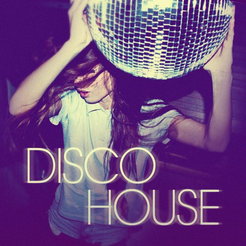 Album Art - Disco House