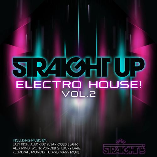 Album Art - Straight Up Electro House! Vol. 2