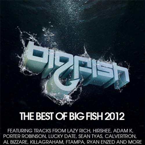 Album Art - Best of Big Fish 2012