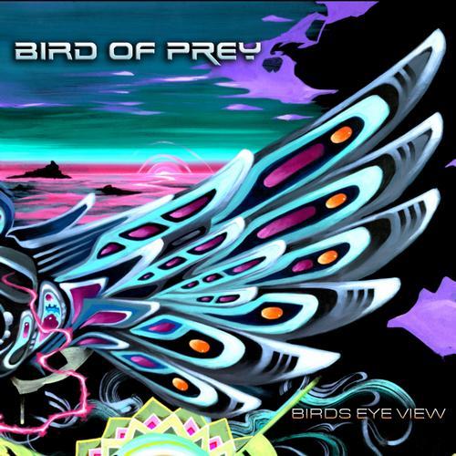 Album Art - Birds Eye View