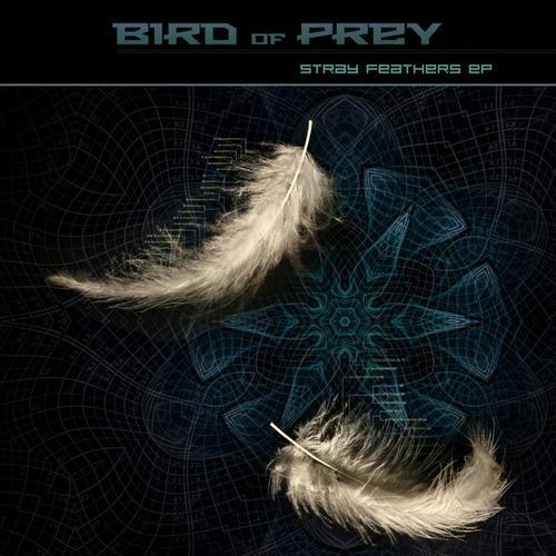 Album Art - Stray Feathers