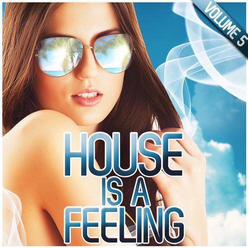 Album Art - House Is A Feeling Vol. 5