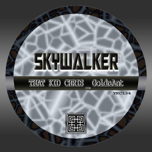 Album Art - Skywalker