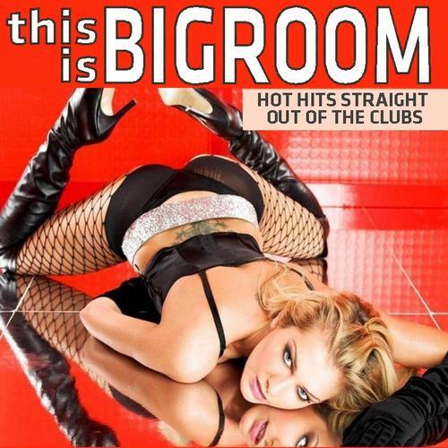 Album Art - This Is Bigroom