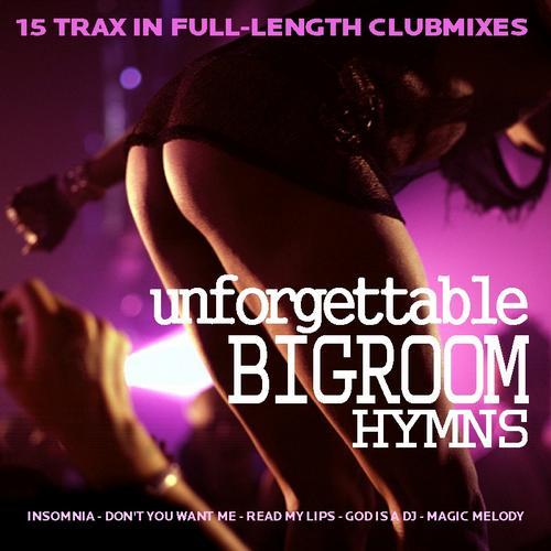 Album Art - Unforgettable Bigroom Hyms
