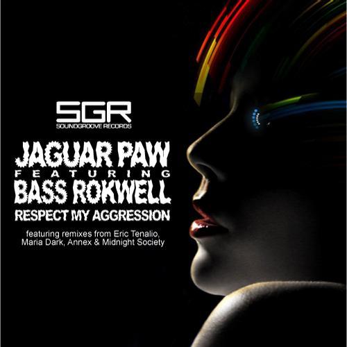 Album Art - Respect My Aggression