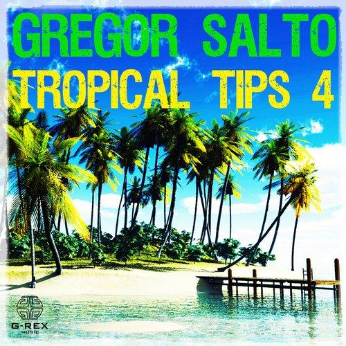 Album Art - Gregor Salto - Tropical Tips 4
