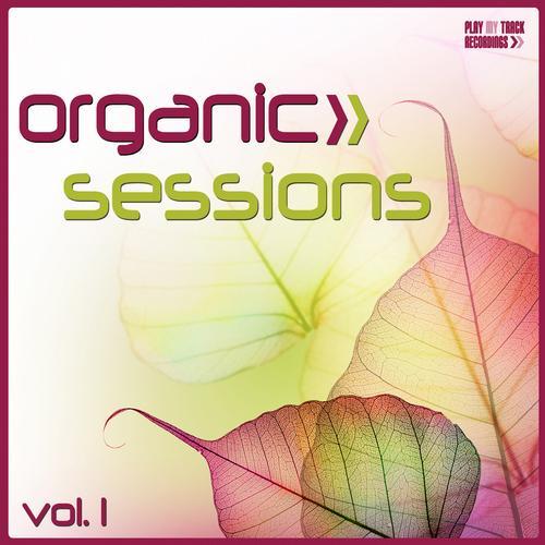Album Art - Organic Sessions, Vol. 1