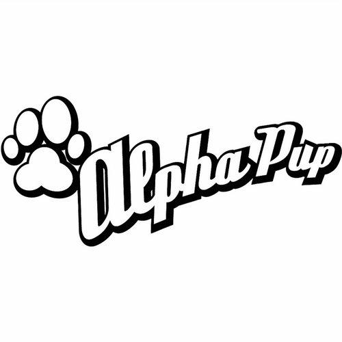 Album Art - Alpha Pup #BeatportDecade Electronica