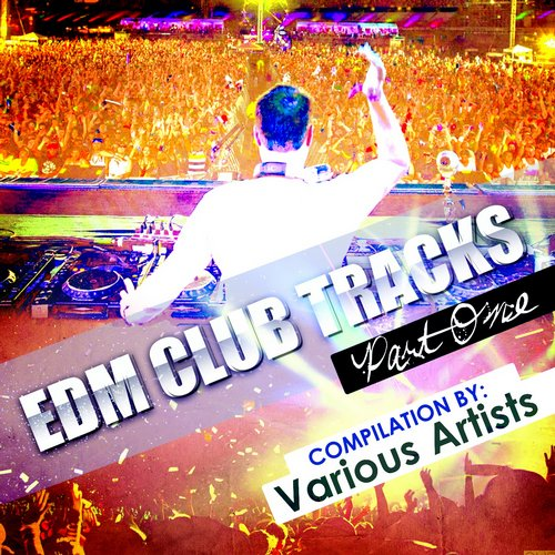 Album Art - EDM Club Tracks - Part One