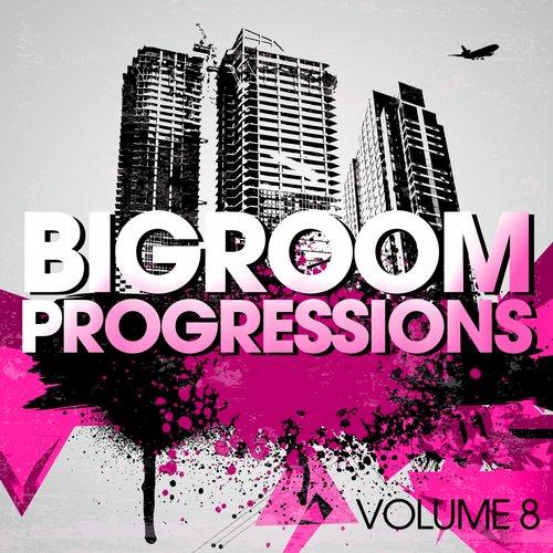 Bigroom Progressions - Volume 8 Album Art