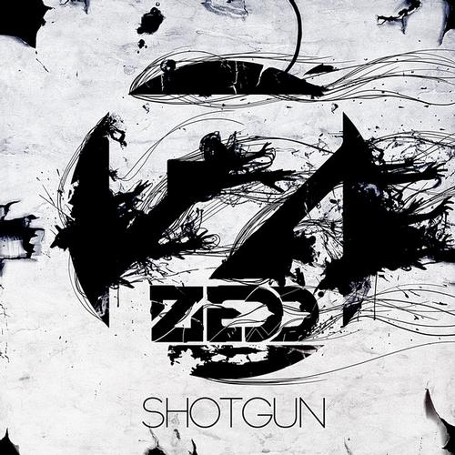 Album Art - Shotgun