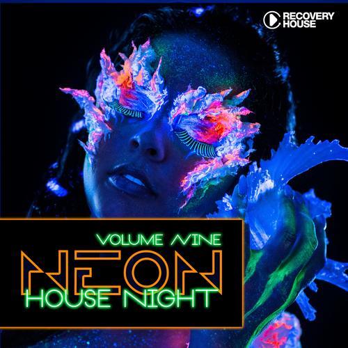 Neon House Night Vol. 9 Album Art