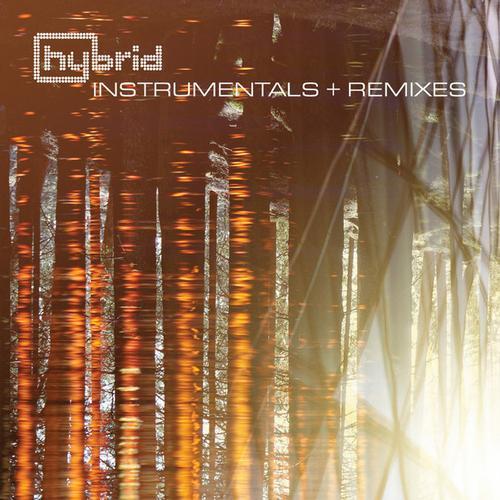 Instrumentals and Remixes Album Art