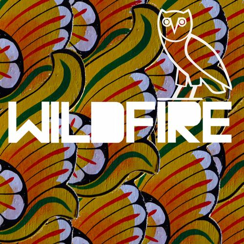 Album Art - Wildfire