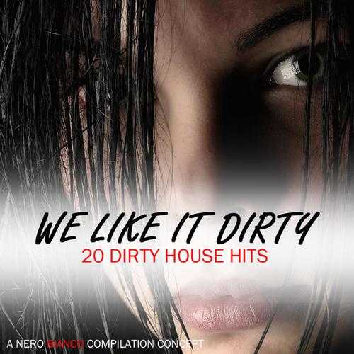 We Like It Dirty Album Art