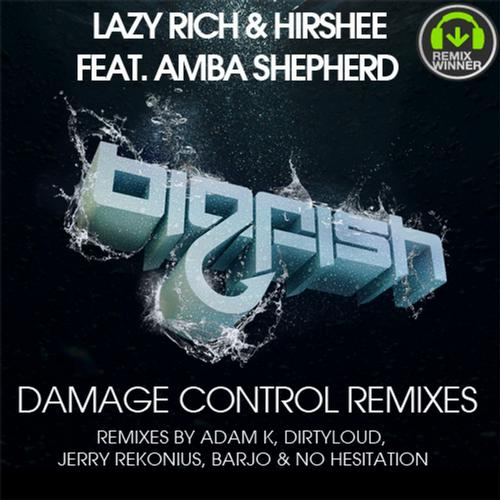 Album Art - Damage Control Remixes