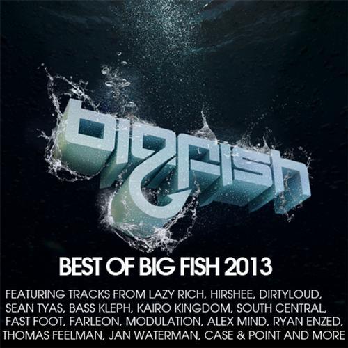 Album Art - Best of Big Fish 2013