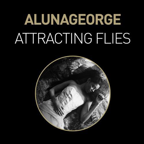 Album Art - Attracting Flies