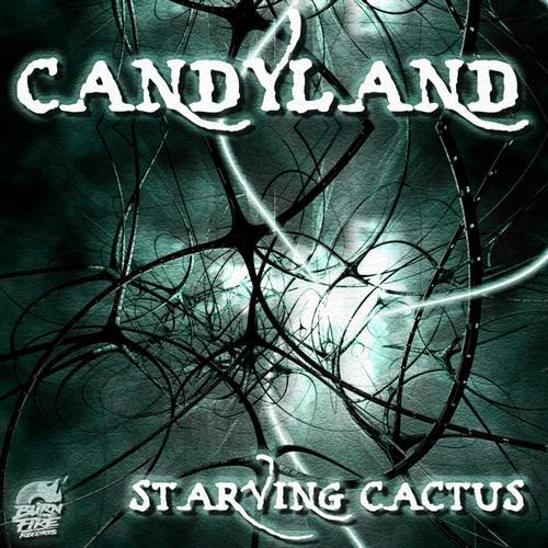 Album Art - Starving Cactus