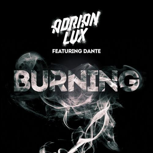Album Art - Burning feat. Dante (Ivan Gough & Feenixpawl Remix)