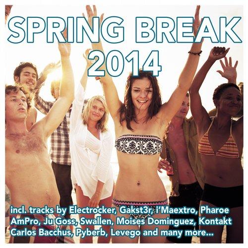 Album Art - Spring Break 2014