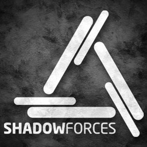Album Art - Shadowforces On LP