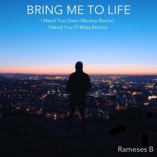 Album Art - Bring Me to Life