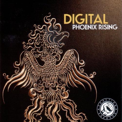 Album Art - Phoenix Rising