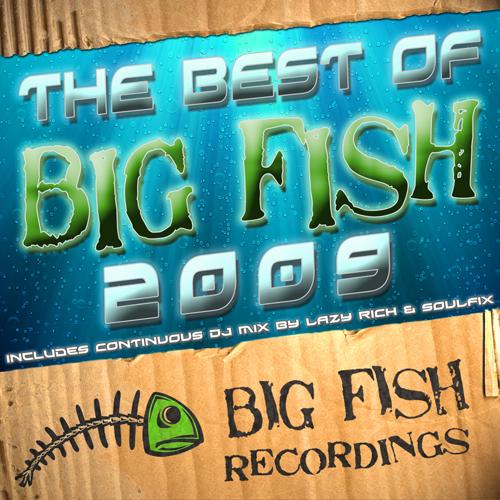 Album Art - The Best Of Big Fish 2009