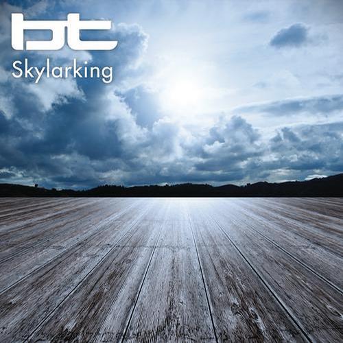 Album Art - Skylarking