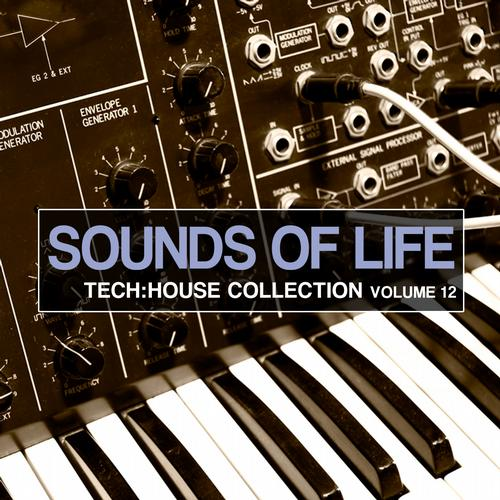 Album Art - Sounds Of Life - Progressive House Collection Vol. 12