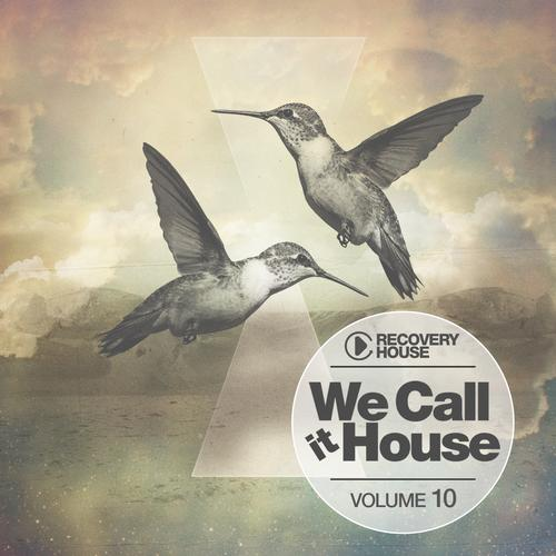 Album Art - We Call It House Vol. 10