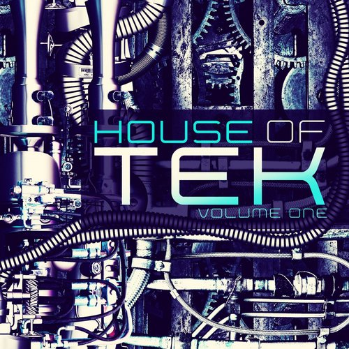 House of Tek, Vol. 1 Album Art