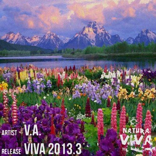 Album Art - Viva 2013.3