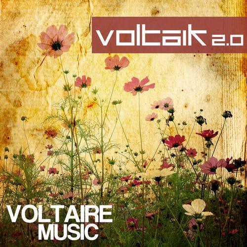 Album Art - Voltaik 2.0