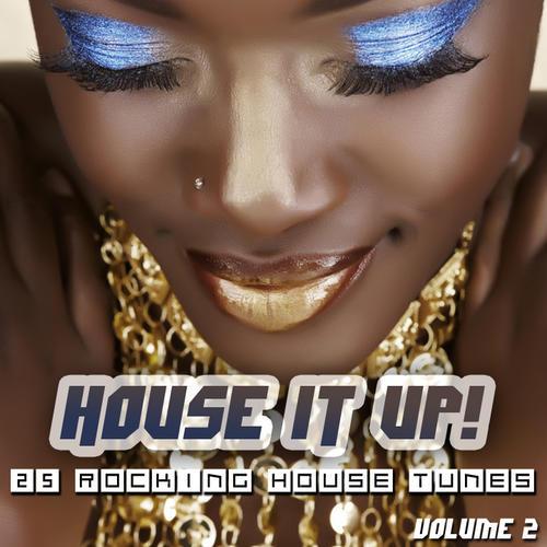 Album Art - House It Up Volume 2 - 25 Rocking House Tunes