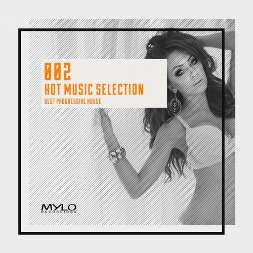 Album Art - Hot Music Selection, Vol. 2