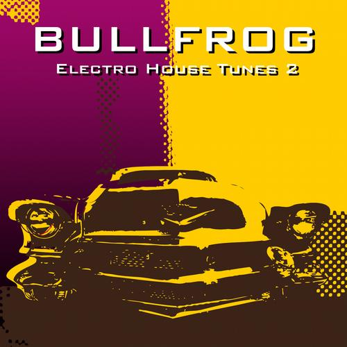 Album Art - BULLFROG 2