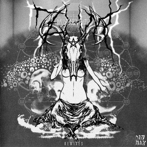 Album Art - ZHM Remixes