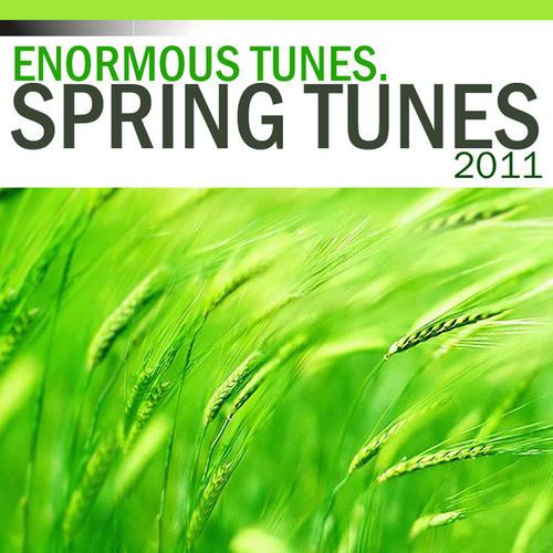 Spring Tunes 2011 Album Art