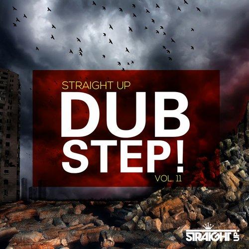 Album Art - Straight Up Dubstep! Vol. 11