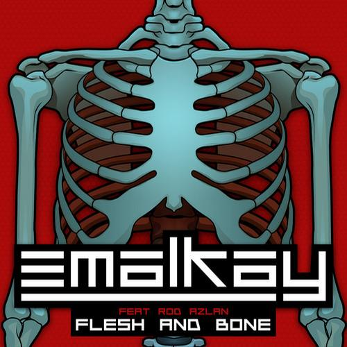 Album Art - Flesh & Bone (Remixes)